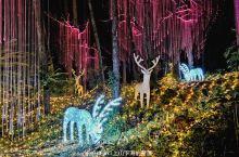 森林漂流+森境光影+冰川水谷+奇妙世界+火山温泉,两天一夜清远森波拉升级玩法