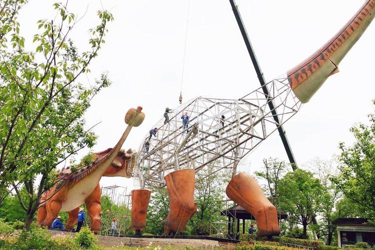 上海顧村恐龍園4