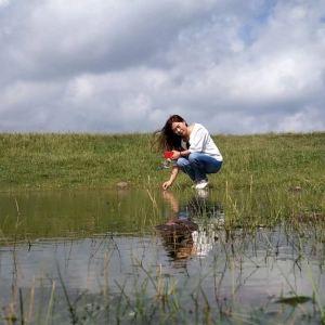 乌海市龙游湾湿地公园旅游景点攻略图