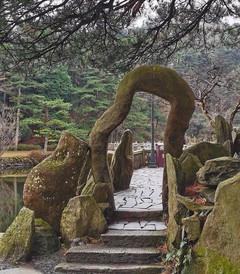 [庐山风景区游记图片] 庐山:与李白望不同的瀑布,与苏轼识不同的面目
