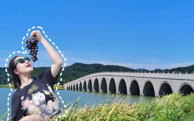 浙江周边游丨绍兴上虞两天一夜,访古迹,赏风景,拍美照,摘葡萄吃,很香!