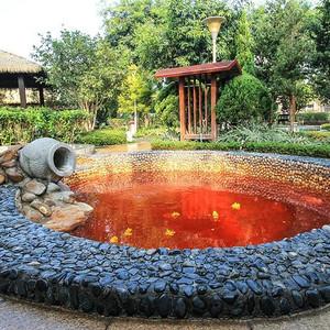 佛冈游记图文-温泉、别墅、美景配美食,我就喜欢这样的度假方式!