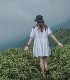 [雅安游记图片] 蒙顶山|距成都仅一个半小时的避暑圣地,给你一个23℃的夏天!