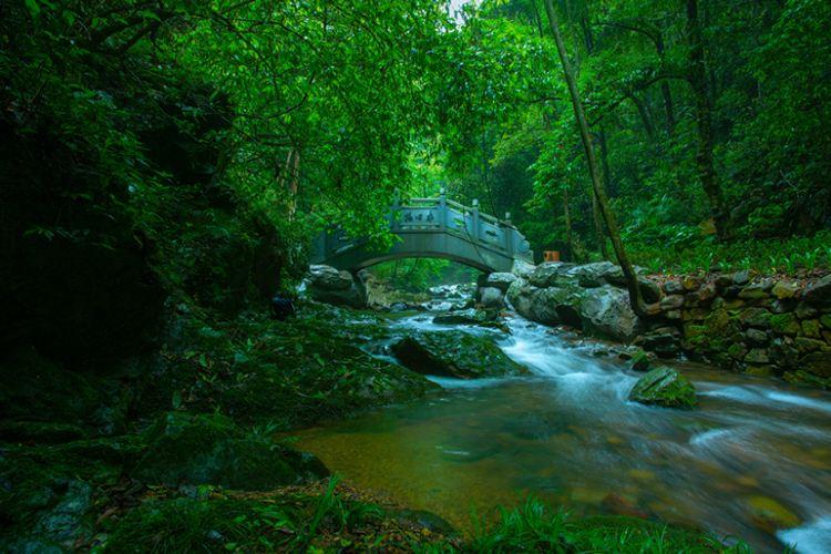 Yangling National Forest Park4
