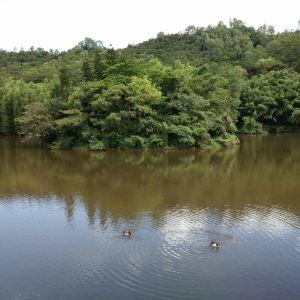 滴水岩森林公园旅游景点攻略图