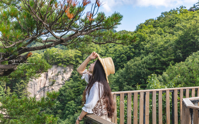 「避暑胜地」老界岭·体验21度的夏日凉爽:星空晚宴,森林木屋