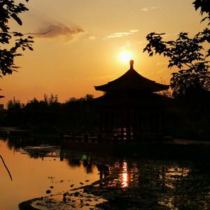 河南游记图文-低风险地区的八日游