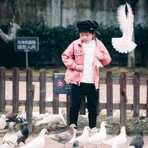 湘潭游记图文-三天两晚玩不够,湘潭这个大观园可以喂孔雀还有房车,太好玩