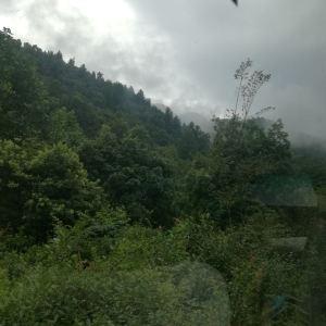 井冈山旅游景点攻略图