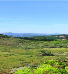 [长治游记图片] 那一年,给我一个月的时间,看山西五千年,晋善晋美,自驾走遍山西:长治太行大峡谷板山、金鸡寨【第十四站
