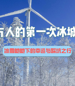 [哈尔滨游记图片] 南方人的第一次冰城之旅:冰雪皑皑下的幸运与踩坑之行!