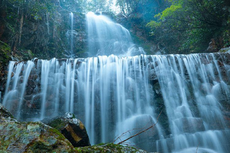 Yangling National Forest Park2