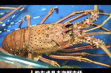 青岛吃海鲜的正确打开方式,这样才不会被坑