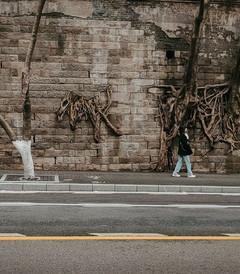[重庆游记图片] 重庆森林,一部现实与梦境交织的电影
