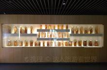 佛有千面,竹亦如此 在浙江安吉竹博园的满眼翠色中 发现竹的千面 抛开诗人的歌咏 忘却大家的巨制 在中