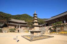 江原道月精寺寺庙体验