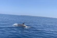 美娜多 海洋公园