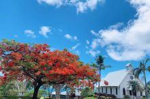 澳大利亚旅游艾尔利海滩大堡礁