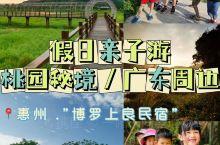 广东周边亲子游 桃园秘境-博罗上良民宿