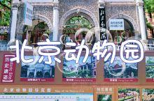 《北京动物园~最美的悠闲欢愉时光》