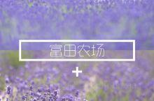 薰衣草庄园 日本人富田忠雄的私家农场,早年他从法国普罗旺斯带回了薰衣草种子,经过细心培育,有了今日大