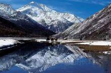 海螺沟位于贡嘎雪峰脚下,以低海拔现代冰川著称于世。晶莹的现代冰川从高峻的山谷铺泻而下;巨大的冰洞、险