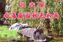 名古屋白鸟庭园秋色如画
