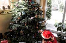 我们的圣诞树(圣诞节系列3)