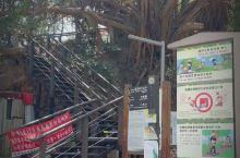 台湾高雄寿山公园
