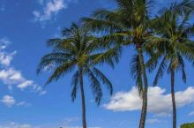 珠海海滨公园位于海滨南路与香炉湾之间,北起犀牛望月山,南至海景路,东至菱角咀,南距澳门5千米占用地1