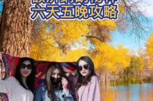 火爆最美秋天,胡杨林,秋是悲秋还是丰收?