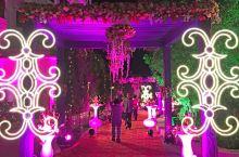 酒店巧遇印度人结婚典礼