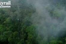 世界自然遗产湿热带雨林