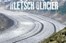 阿尔卑斯冰川之王 阿莱奇冰川  
