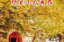 旅行 | 帝都银杏季,绝美小众寺庙五塔寺