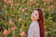 等闲识得东风面,万紫千红总是春 满满的春天气息扑面而来,田园的三月 花香四溢,不负春光,3月女神们快