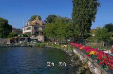 瑞士   日内瓦湖畔来钓鱼啦
