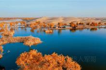 我的旅行日记 大美新疆的秋天,是你想不到的美……每年的10月下旬我都会前往新疆南部,欣赏最美的胡杨,