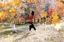 凤凰沟遇见最后一抹秋色