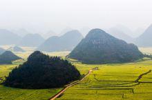 山和油菜花互溶的地方金鸡峰丛