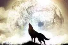 狼一样的野心