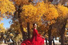绝美秘境内蒙古额济纳旗|国内小众出圈旅行