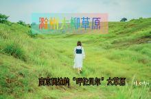 南京1小时可达的天然草原