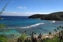 恐龙湾(Hanauma Bay)是来夏威夷的游客最喜欢去的潜水的地方。水浅,浪小,鱼多,风景美丽,那