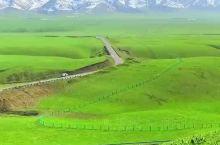 海拔两千多,五月的伊犁那拉提