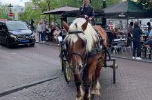阿姆斯特丹的宝马