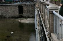 青岛的海泊河现在的水不多