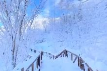 四季美景·冰天雪地