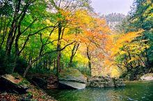 陕西黎坪国家森林公园位于陕西省汉中市南郑区黎坪镇,大巴山西段米仓山腹地,东西长18千米,南北宽13千