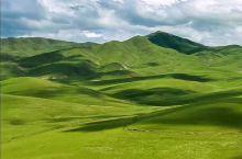 自由行在路上: 如果说西藏是离天堂最近的地方,那甘南就是天堂遗漏在,人间的最后一方净土。 桑科草原甘